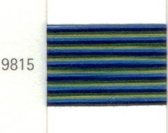 9815 Mettler Silk-Finish Multi 100m