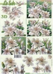 4169860 Weiße Blüten