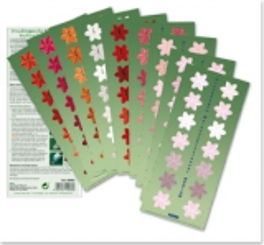 40066 Druckbogen Weihnachtsblüten für Jumbostanzer