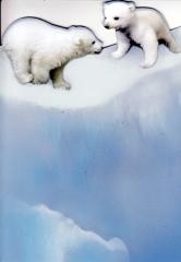 128T Doppelkarte Eisbären