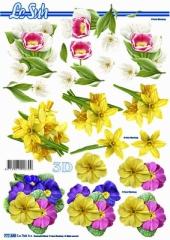 777330 Tulpen / Osterglocken / Primelchen