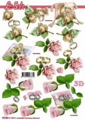 777287 Rose und Ringe