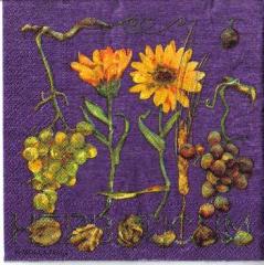 S 13 Trauben und Blumen